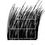 Apertura logo